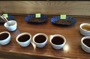 Achilles-Coffee-Roasters-San-Diego-Cupping-2a