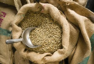 Buy-Green-Coffee-Beans-Online-Achilles-Coffee-Roasters-San-Diego-California