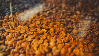How Altitude Affects the Flavor of Coffee Achilles Coffee