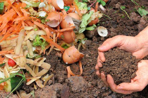 Community Composting Through Local Coffee