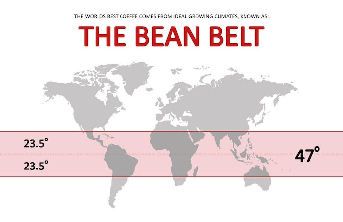 Bean Belt Major Coffee Growing Regions of the World